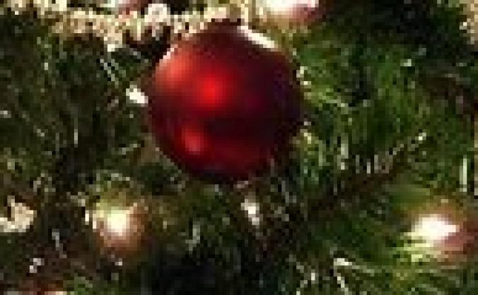 Barnsley Care Leavers Christmas Dinner