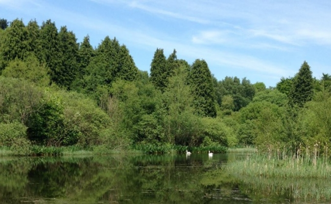 STOP THE EUROPARK - SAVE OUR GREENBELT