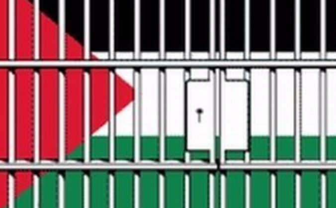 Support a pro-palestinian activist