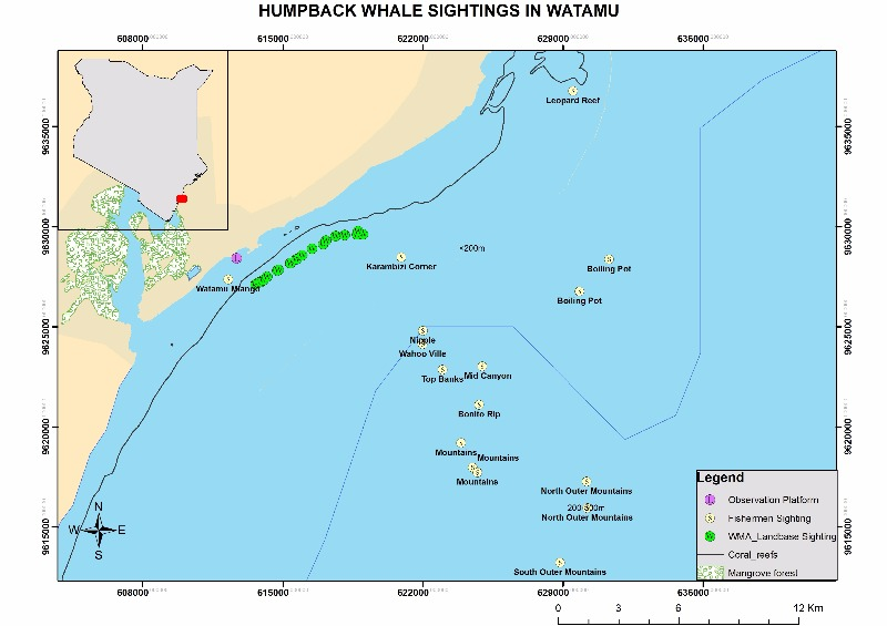 Humpback Whale Land Based and Fishermen Sightings Map by Mike - Data collected by WMA Team