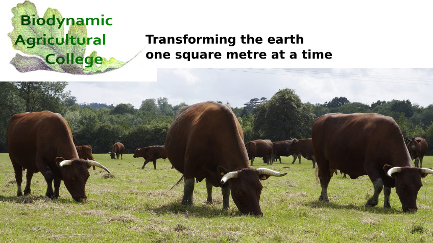 Biodynamic Principles and Practice online course