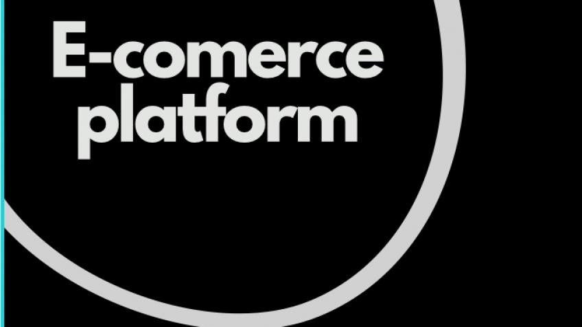 Purchase of a ready-made e-commerce platform