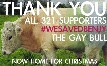 Save Benjy The Gay Bull