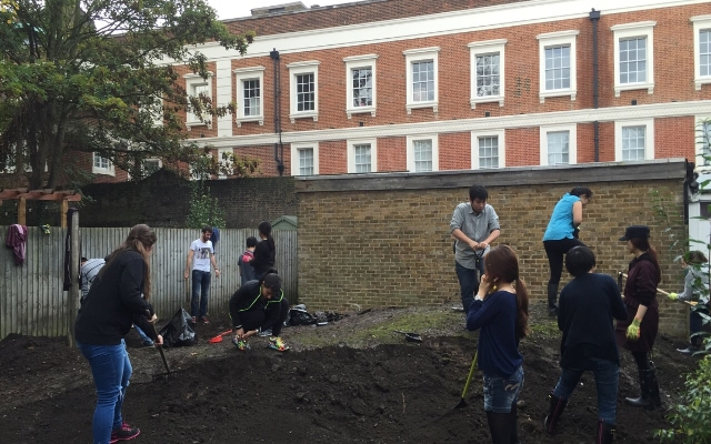 Goldsmiths University Veg Patch for Kids