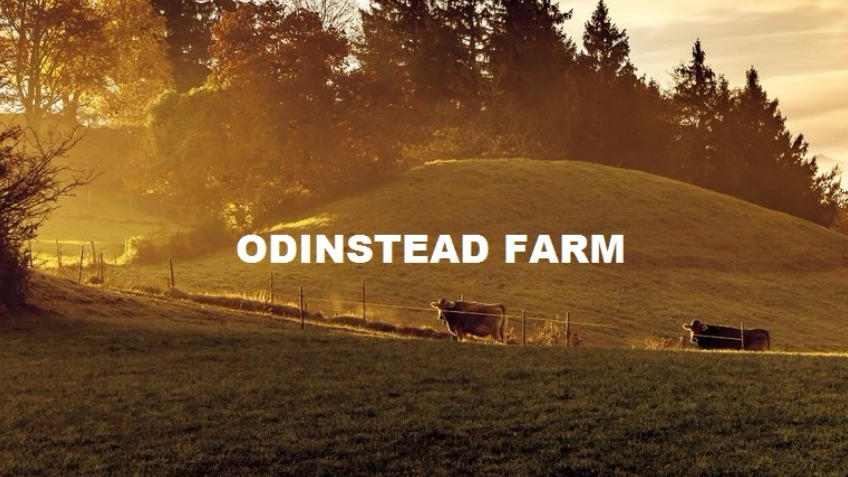 The Odinstead Farm