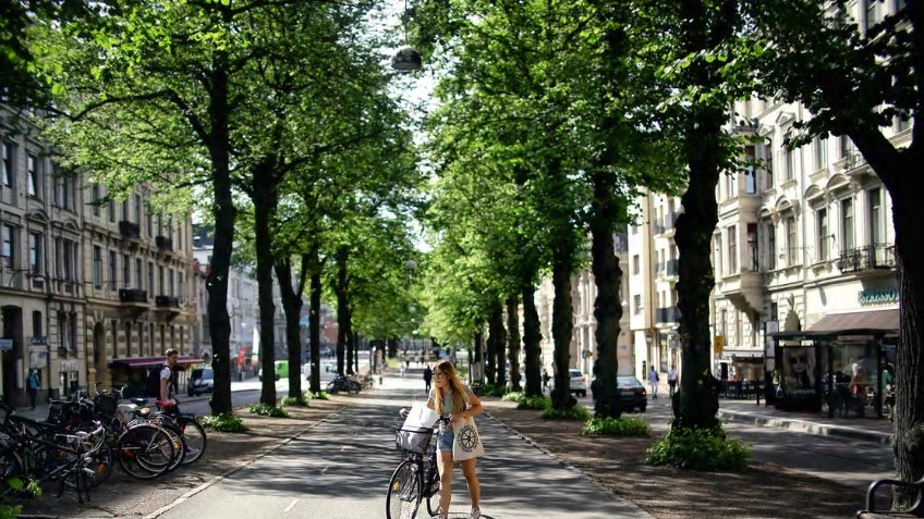 Urban forests fund
