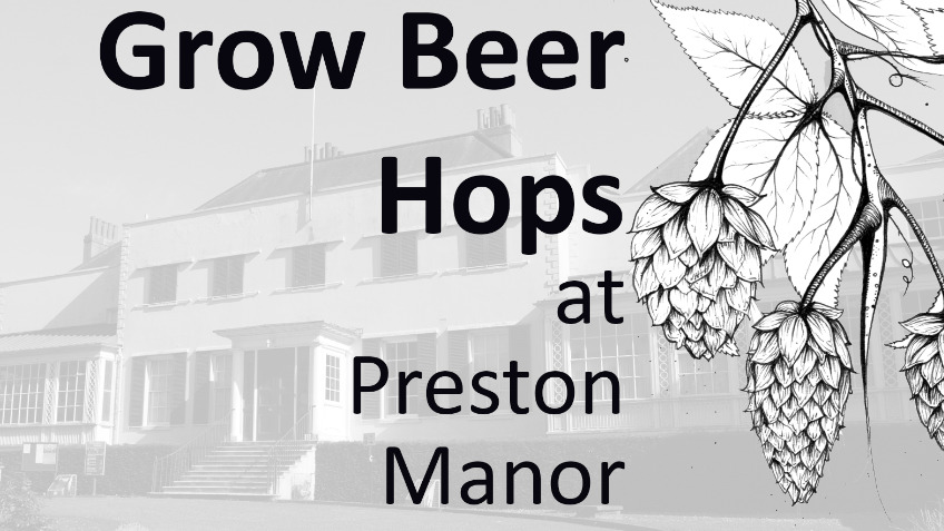 Beer Hops for Preston Manor Gardens and Brighton
