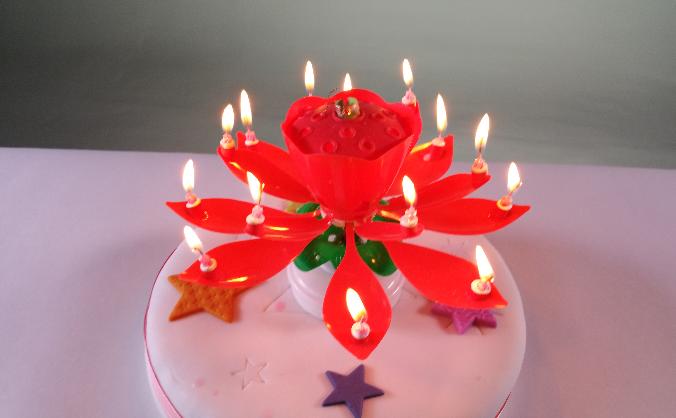 Flower Burst Birthday Cake Candle