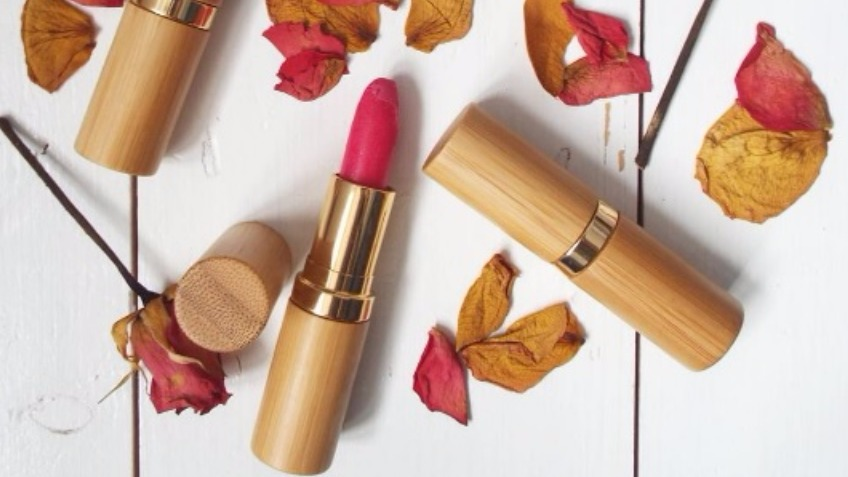 Vegan Lipstick Brand Start Up