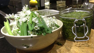 Three cornered leek pesto