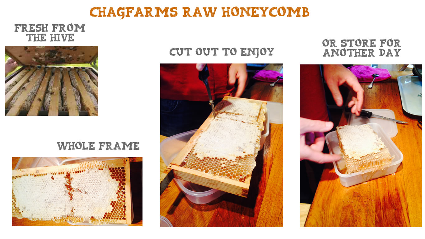 Chagfarm Raw Honey