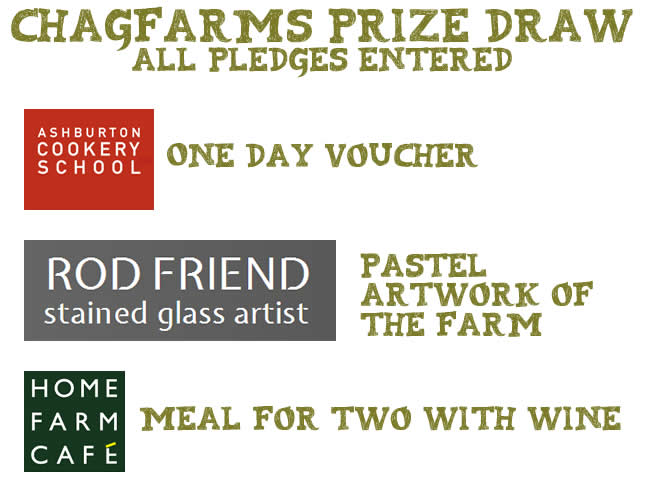 Chagfarms prize draw