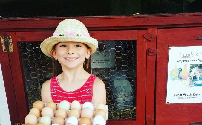Laila's eggs image