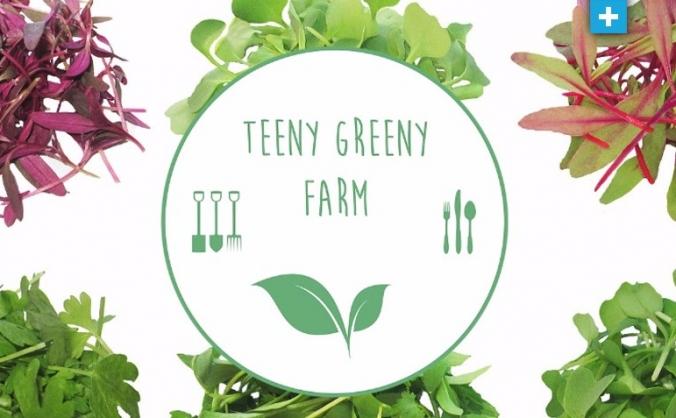 Teeny greeny urban farm crowdfunder image