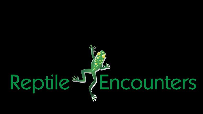 Please Help fund my reptile encounters business