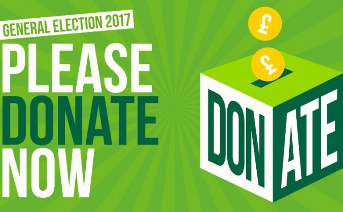 Green party general election fighting fund image
