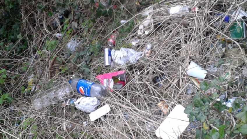 Litter pick in Kent roadside verges