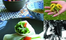 Streetfood: Urban Foraging and World Food