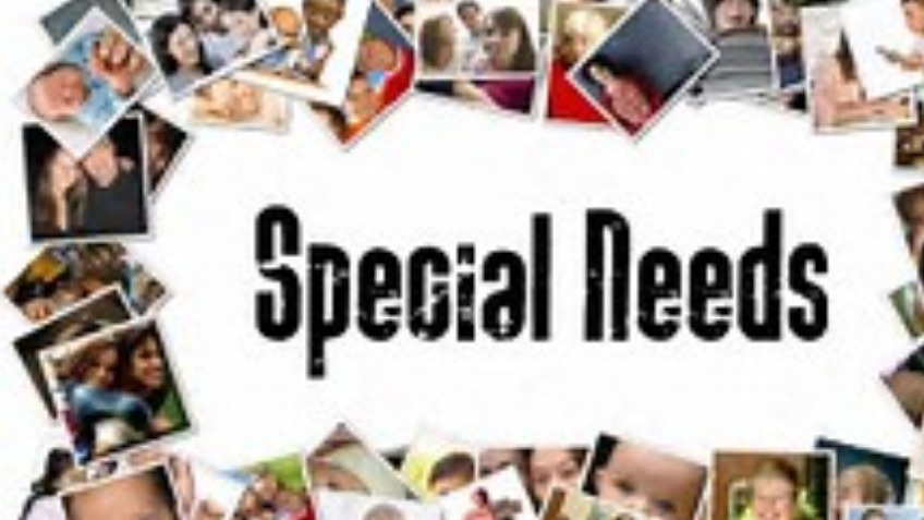 Special needs research program