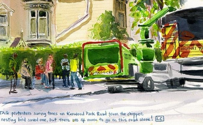 Sheffield street trees legal fund continuation image