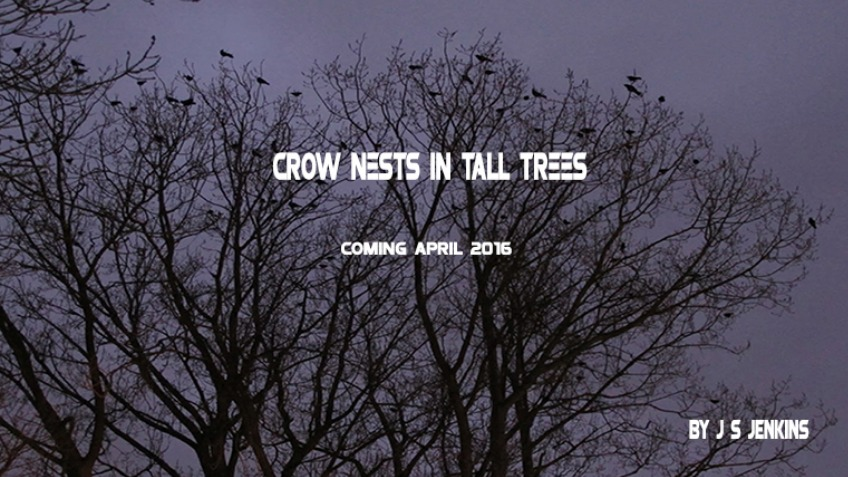 CROW NESTS IN TALL TREES