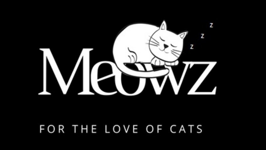 Meowz - For The Love Of Cats