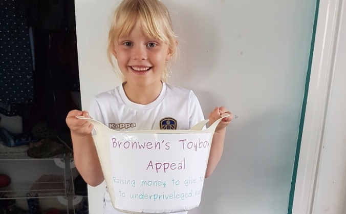Bronwen's toy box appeal image