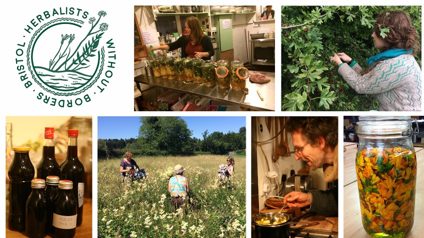 Herbalists Without Borders Bristol