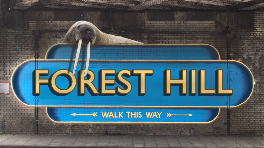 A Better Welcome to Forest Hill