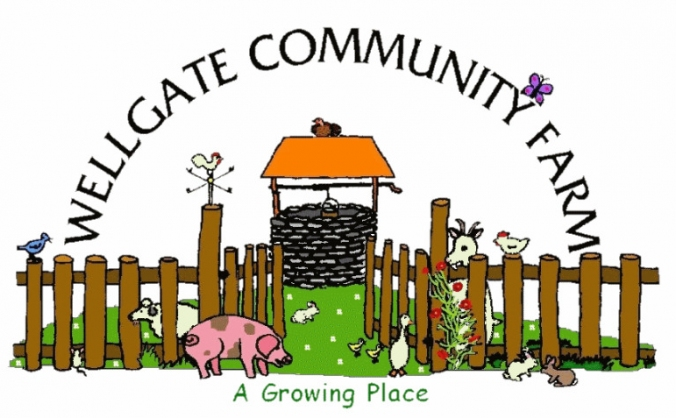 Wellgate community allotments image