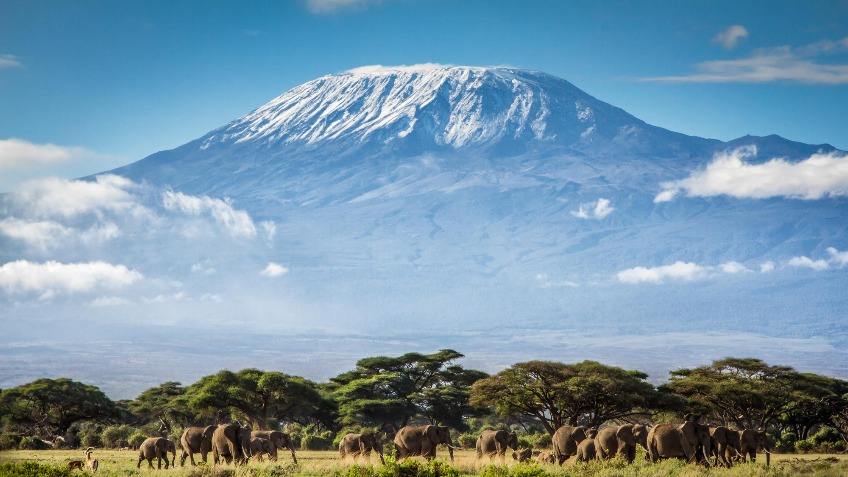 Climb Kilimanjaro Safely and Successfully | Kandoo Adventures