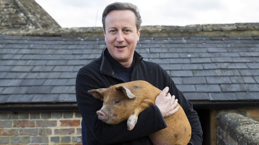 Lets get Dave his dream pig!