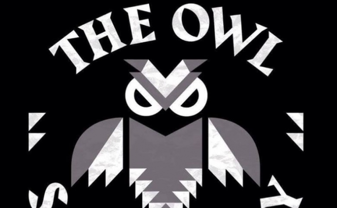 Save the owl sanctuary image