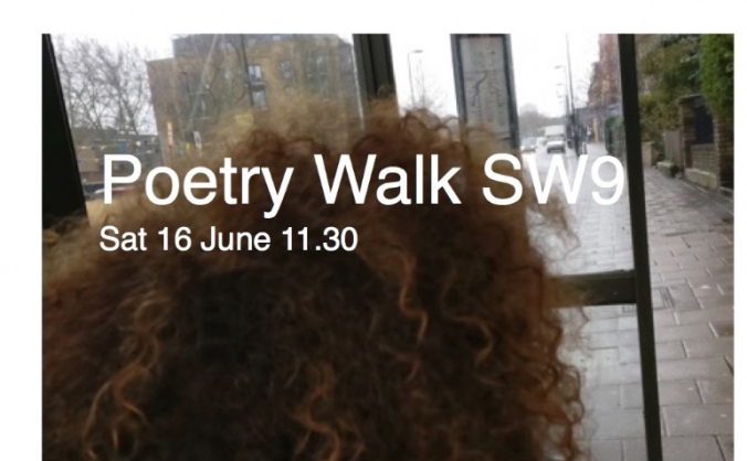 Poetry walk sw9 image