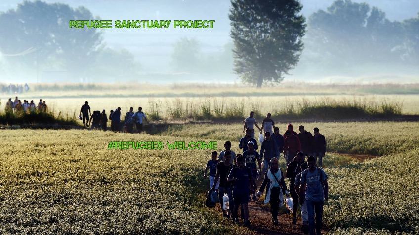 Refugee Sanctuary Project