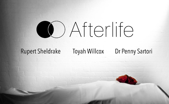 Afterlife - the documentary image