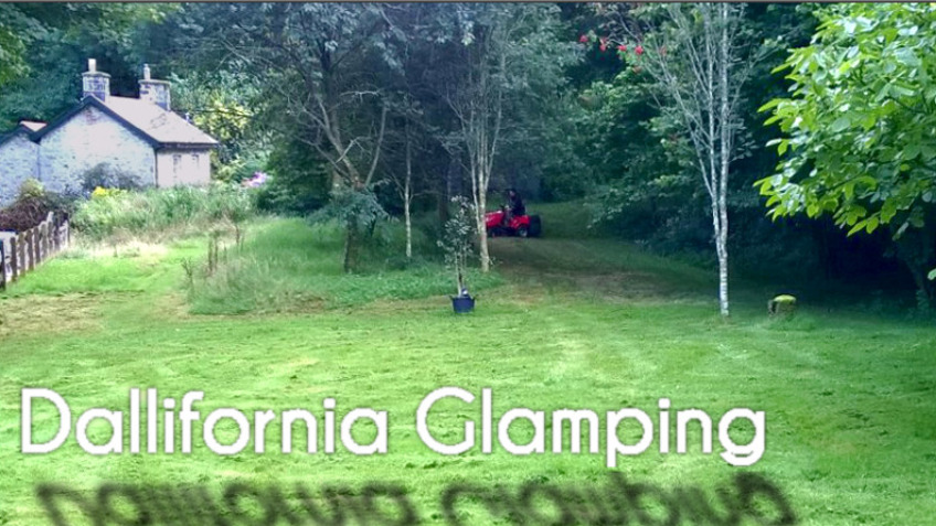 Dallifornia Glamping