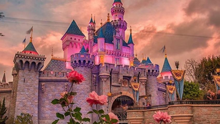 Disneyland -A search for true happiness