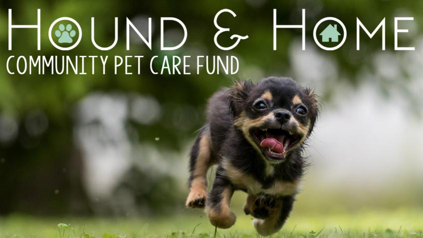 Hound & Home Community Pet Care Fund