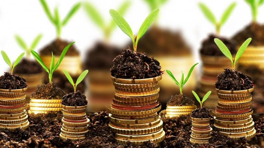 Sarmaya: Crowfunder for local business.