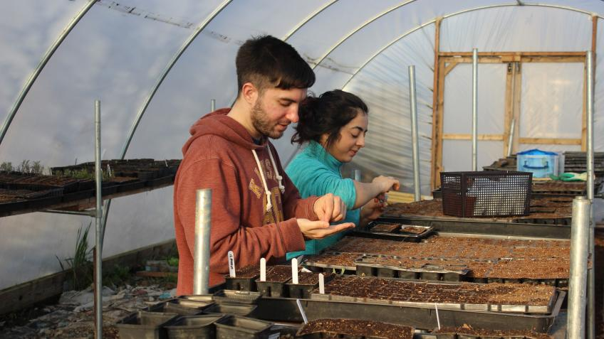 Growing skills & opportunities with Audacious Veg