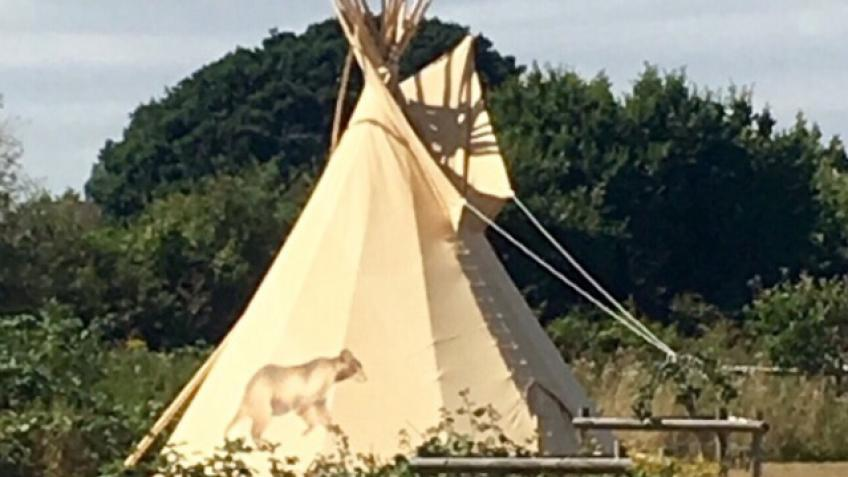 Luxury Topsham Tipi experiences