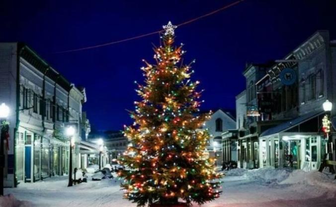 Weybridge christmas tree lights campaign image