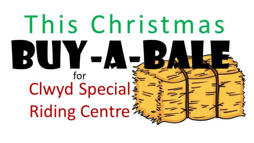 Buy a Bale for CSRC this Christmas