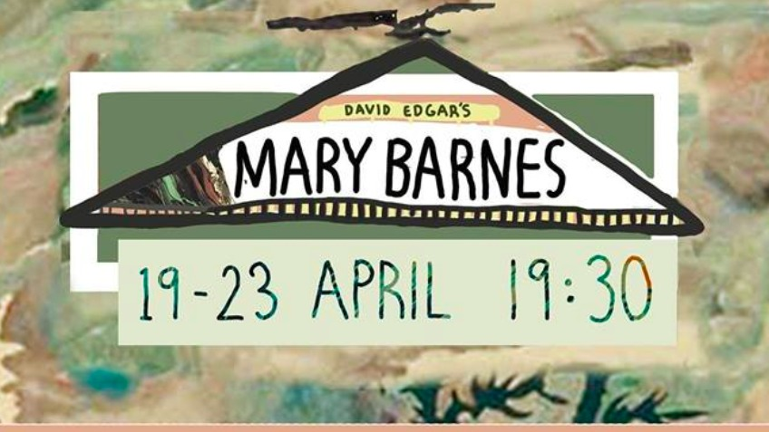 The Mary Barnes Project Needs Funds!
