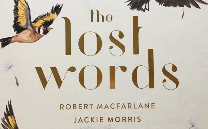 The lost words for oxfordshire primary schools image