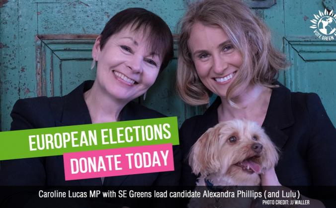 Support south east greens in the european election image