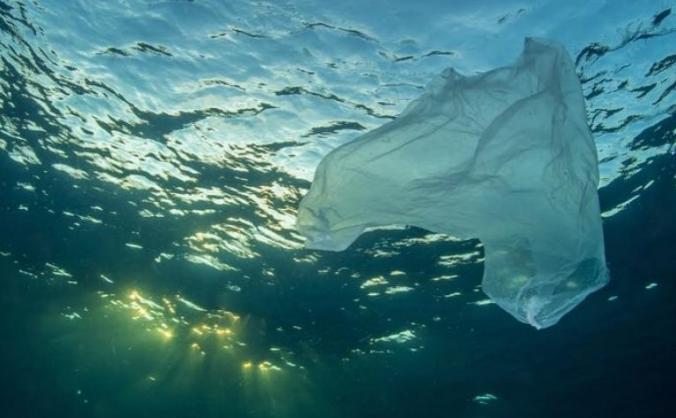 S devon : teaching children about ocean plastics image