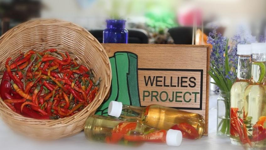 A Therapeutic Garden for the WELLIES Project