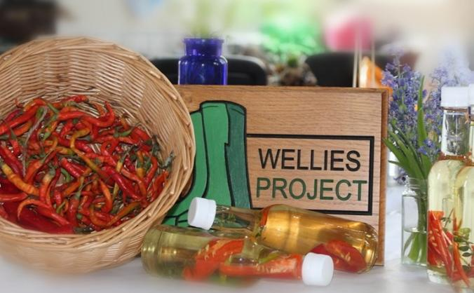 A therapeutic garden for the wellies project image